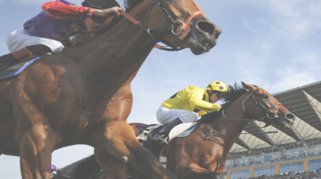 Most Shocking Horse Racing Results In History